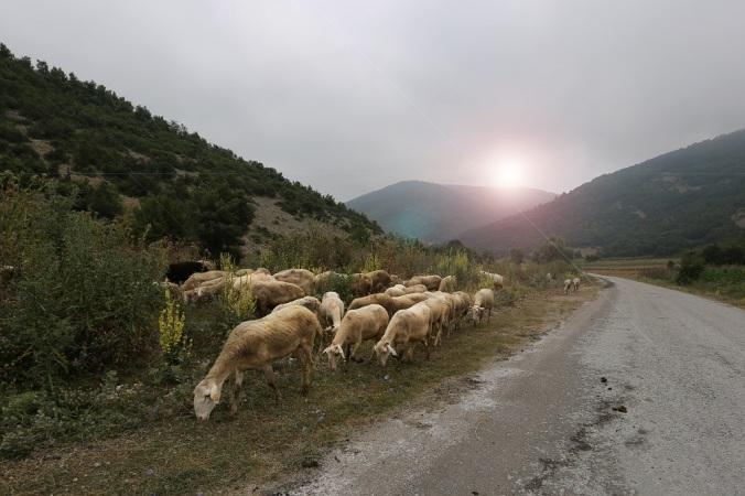 Sansarak Köyü - Fotoğraf KorkutGökhan