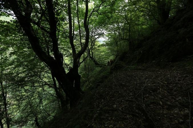 Sansarak Kanyonu - Fotoğraf KorkutGökhan